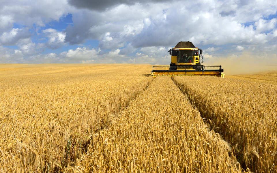 From cutting edge biotechnology to global branded food manufacturing, Norfolk & Suffolk's £3.5 billion agri-food sector is a leader in Europe.